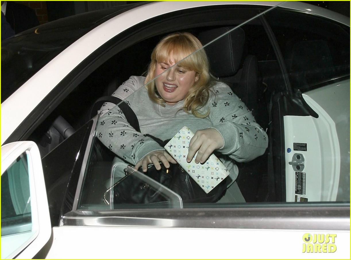 rebel wilson ellen degeneres aka rebellen rap cats on the internet video 023055608