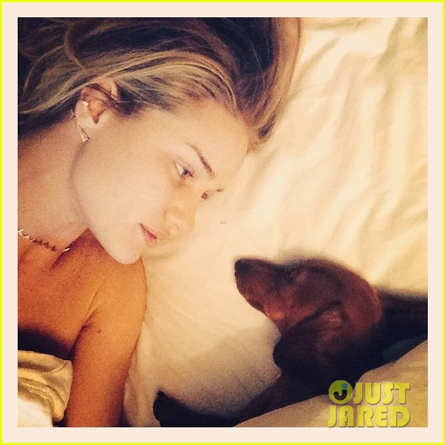 rosie huntington whiteley shares precious moment with her pup 023049198