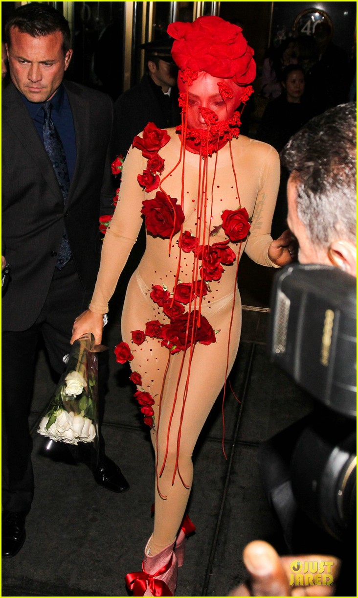 lady gaga rose inspired outfit 233080837