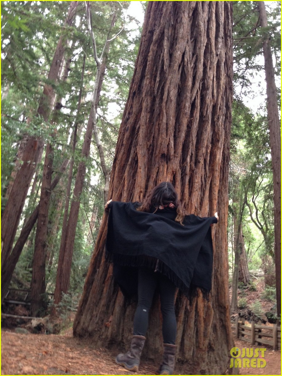vanessa hudgens loves hugging trees see the cute pic 053068579