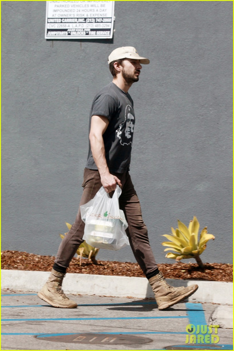 shia labeouf natural born artist 103075582