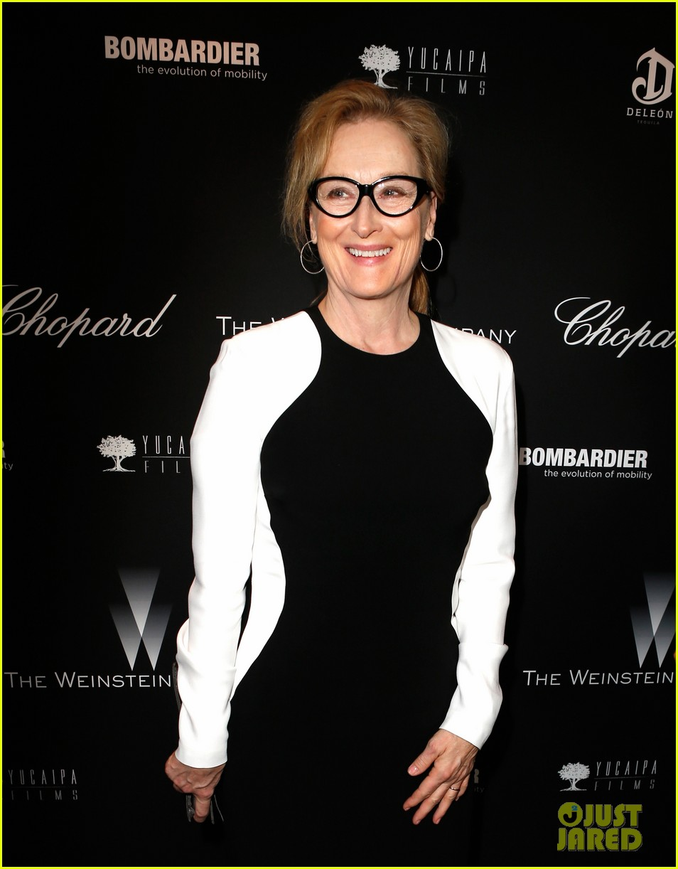meryl streep christoph waltz pre oscars party attendees 013063617