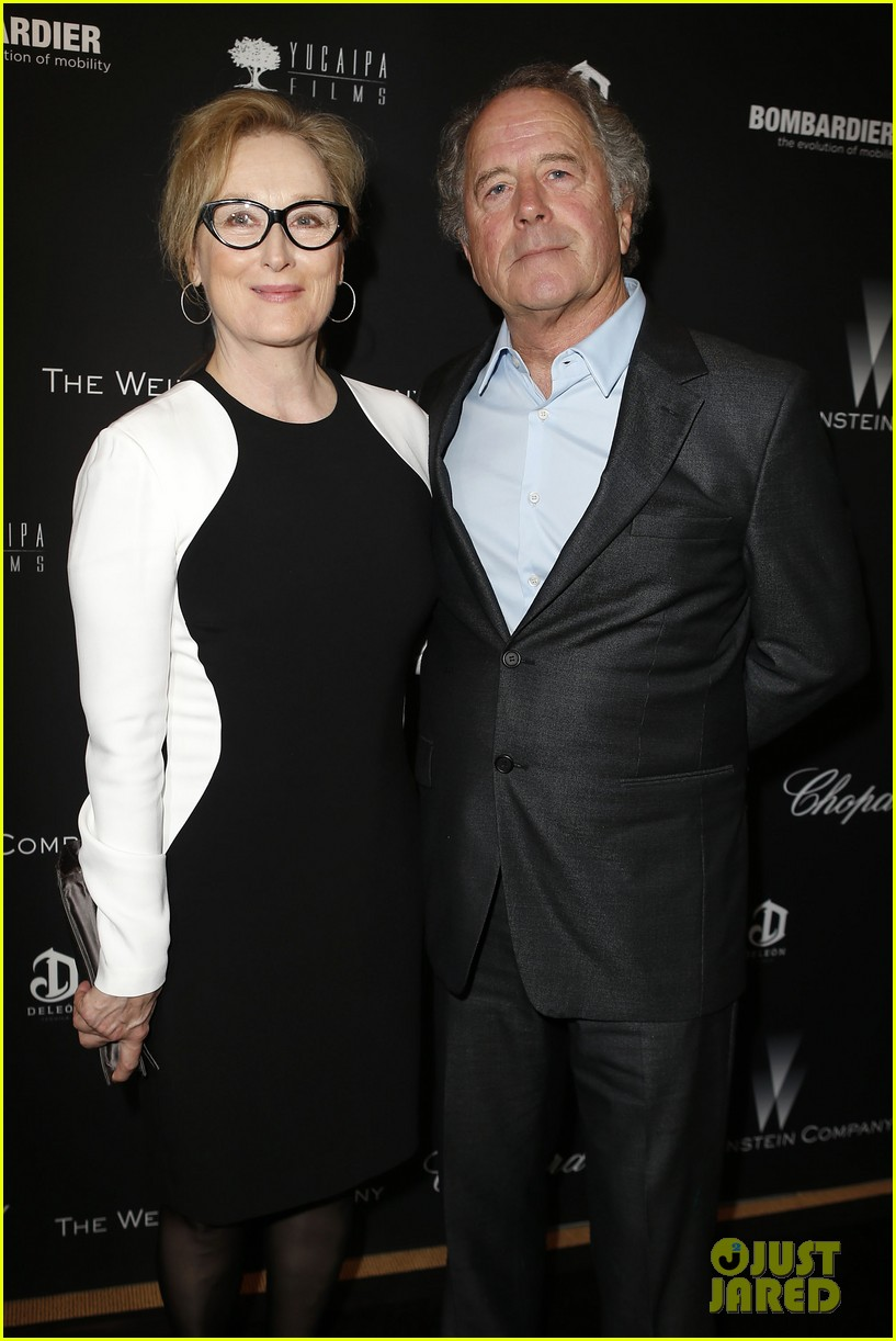meryl streep christoph waltz pre oscars party attendees 063063622