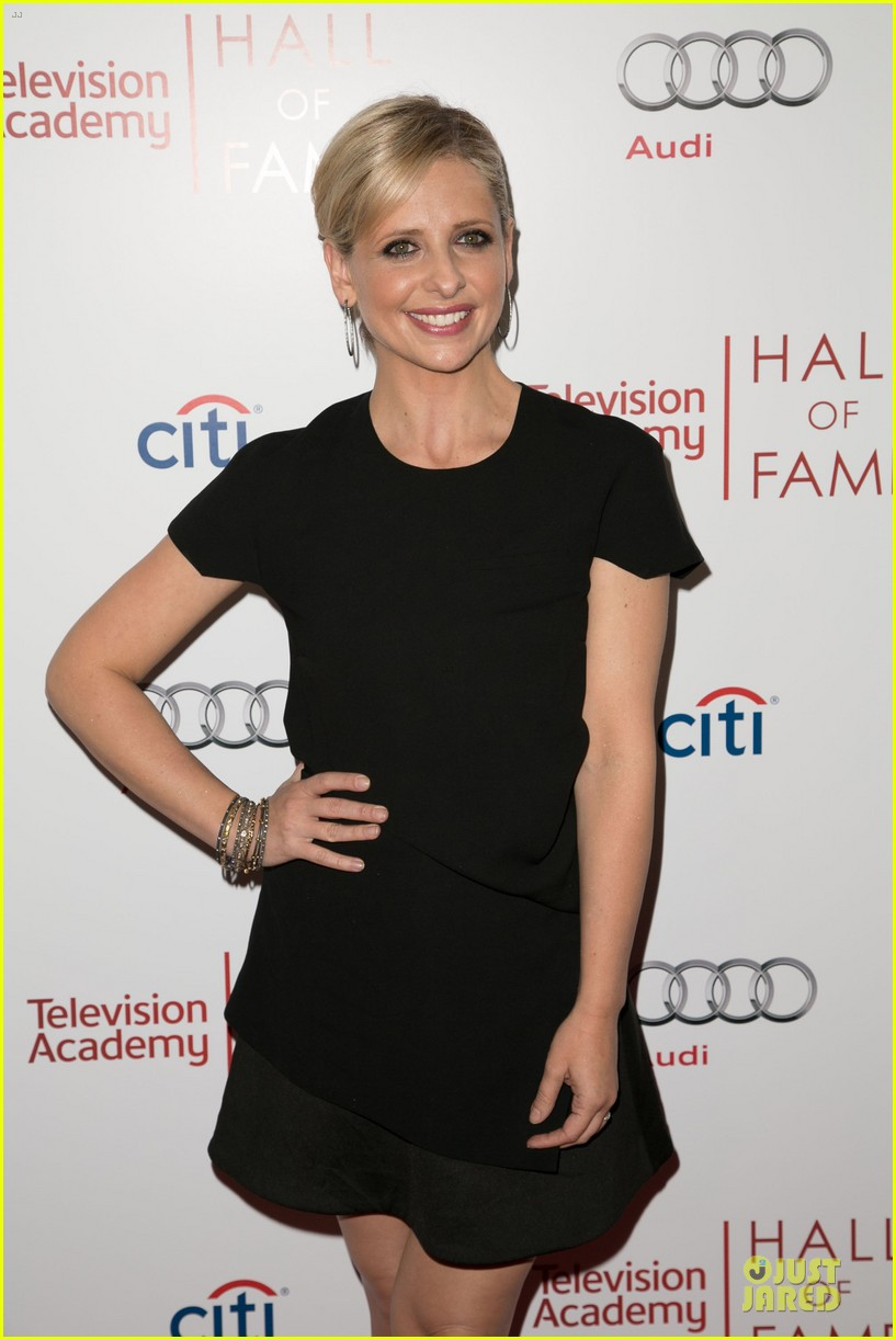 sarah michelle gellar james wolk hall of fame gala 073070207