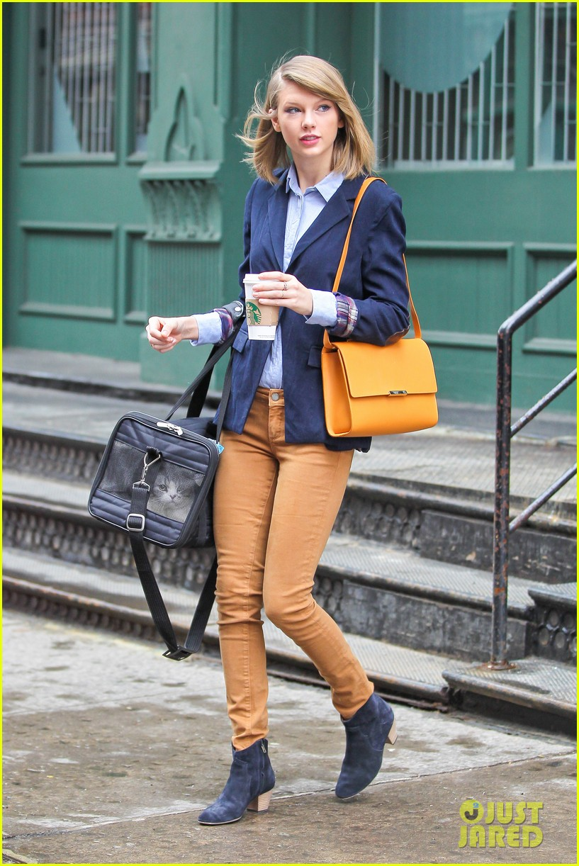 taylor swift brings her cat meredith around nyc in travel carrier 013081772