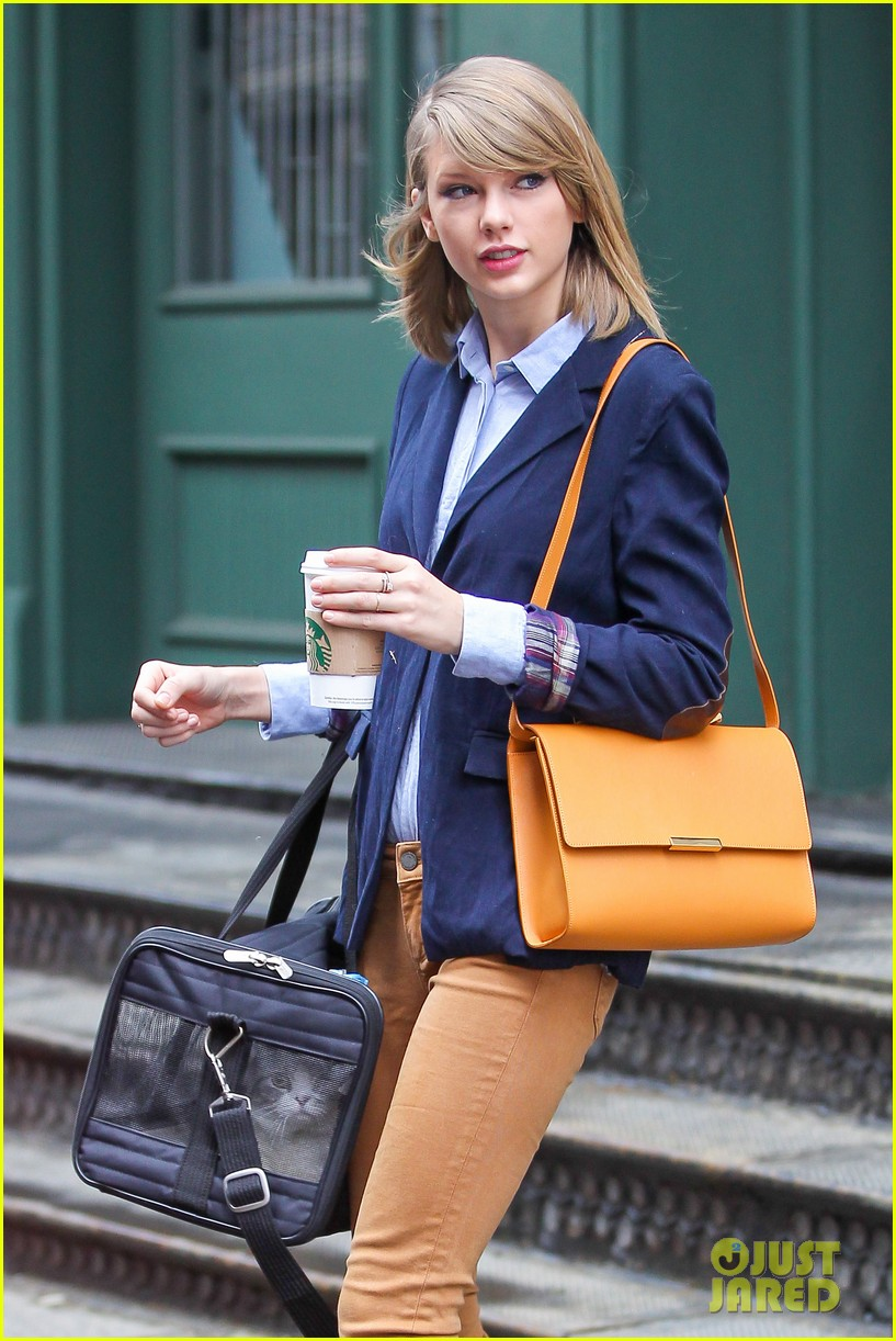 taylor swift brings her cat meredith around nyc in travel carrier 023081773