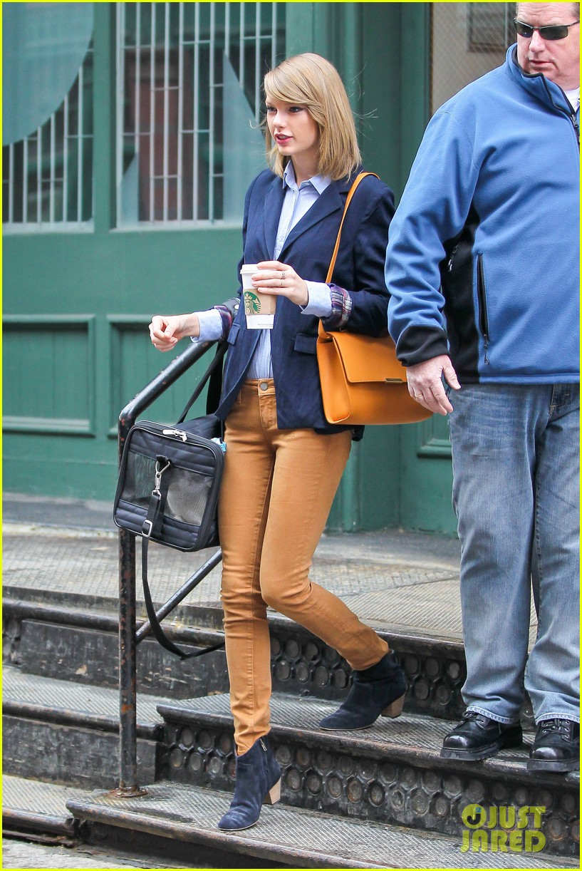 taylor swift brings her cat meredith around nyc in travel carrier 063081777
