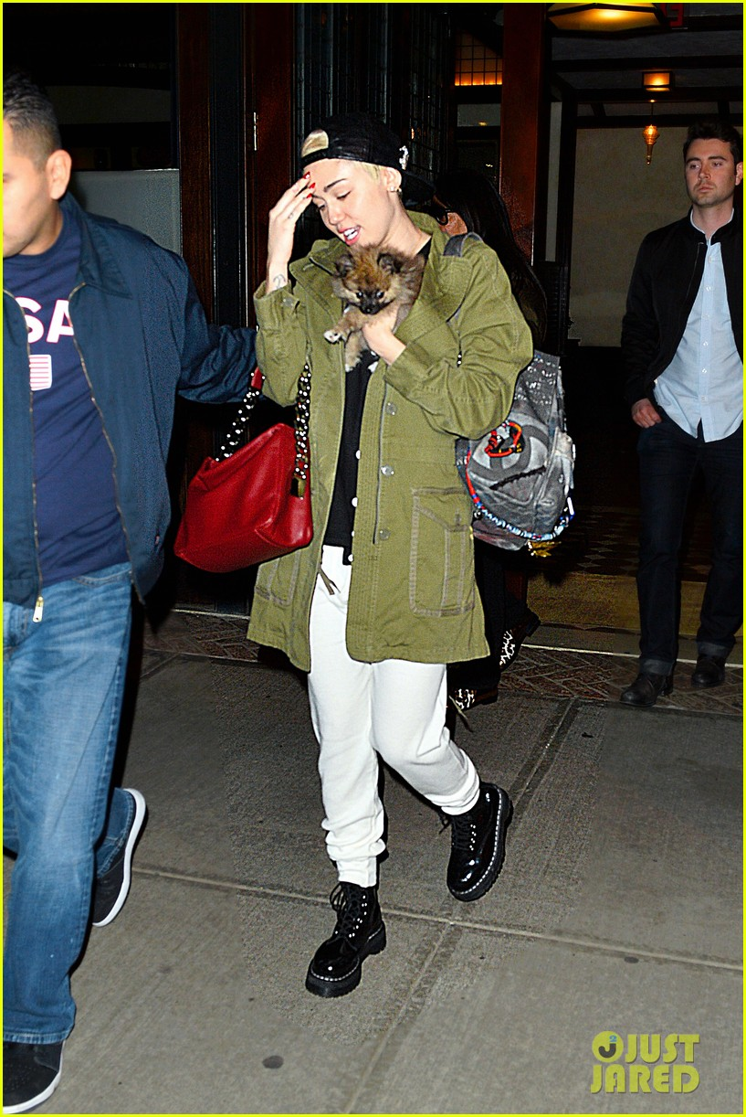 miley cyrus torn about new pup moonie after floyds death 023086228