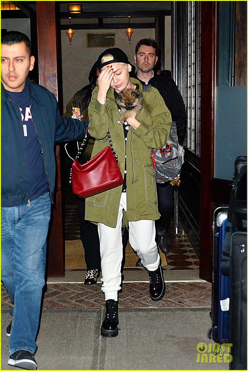 miley cyrus torn about new pup moonie after floyds death 033086229