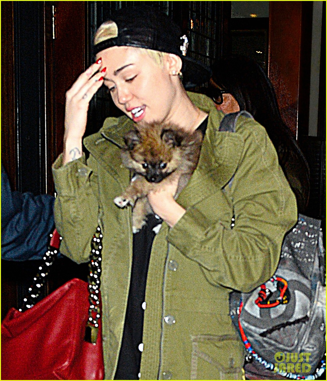miley cyrus torn about new pup moonie after floyds death 043086230
