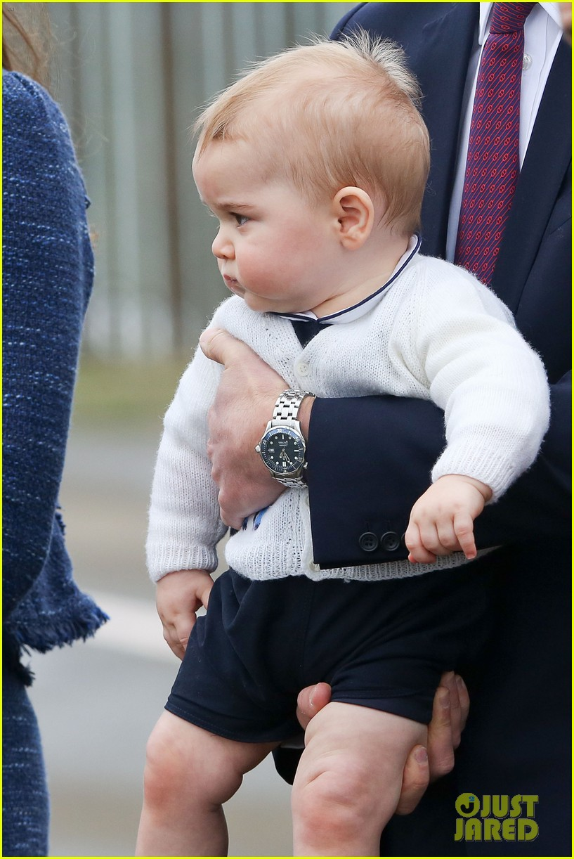 prince george makes appearance parents play with puppies 083092943