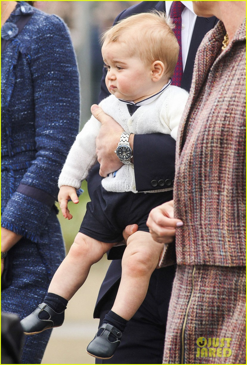 prince george makes appearance parents play with puppies 423092977