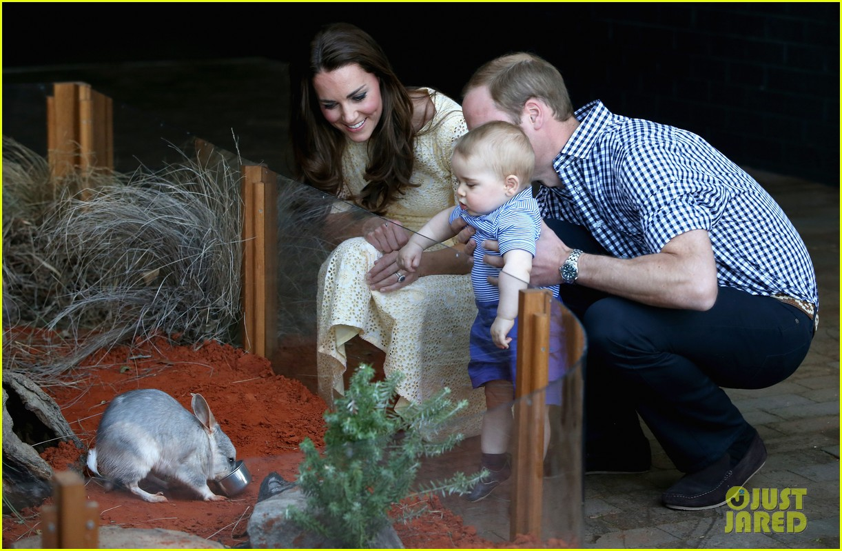 prince george goes to the zoo kate middleton prince william 123095513
