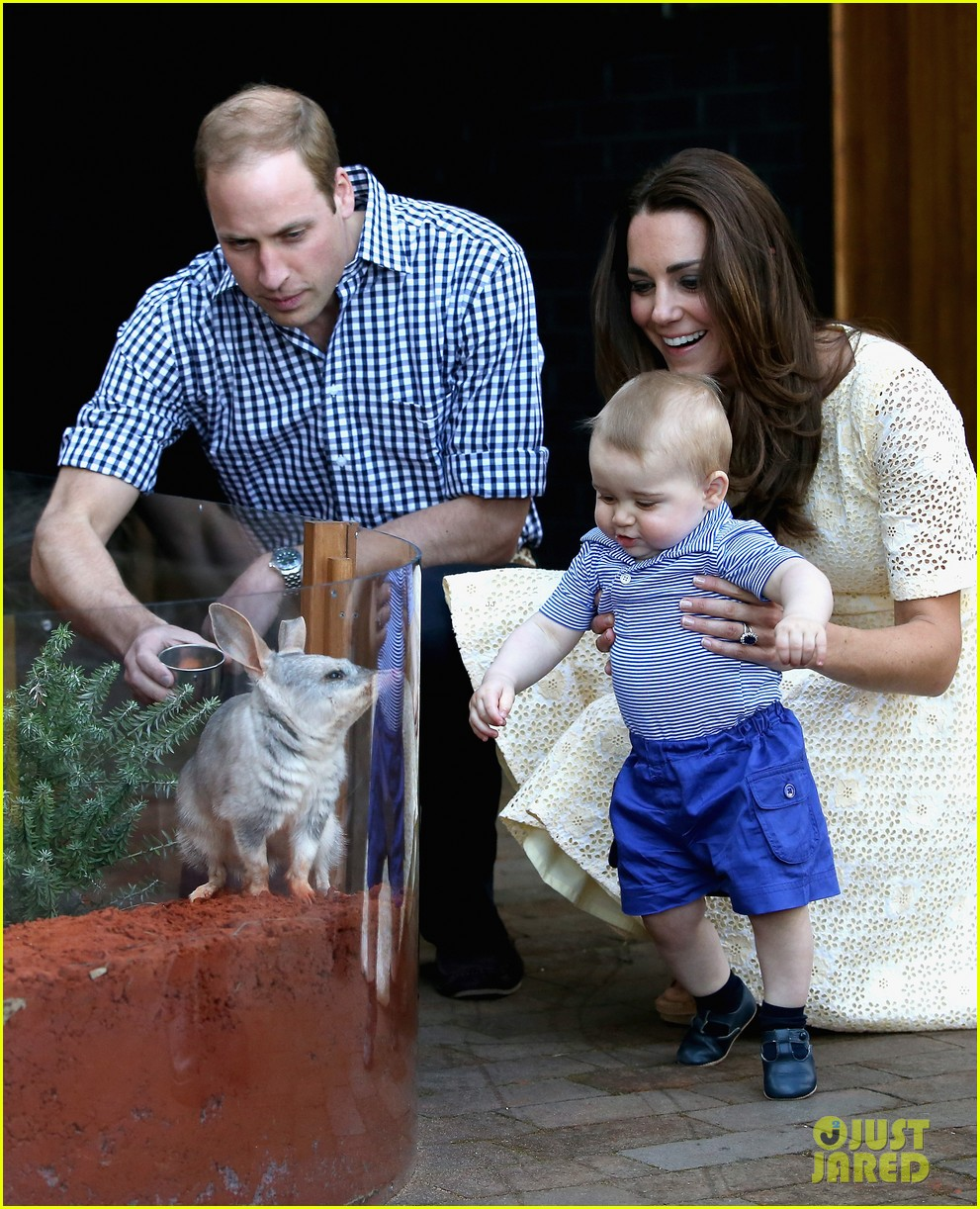 prince george goes to the zoo kate middleton prince william 133095514