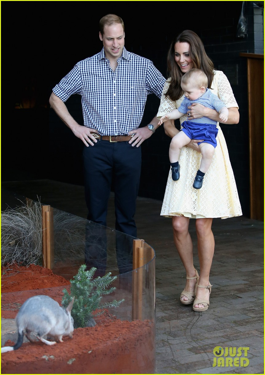 prince george goes to the zoo kate middleton prince william 153095516