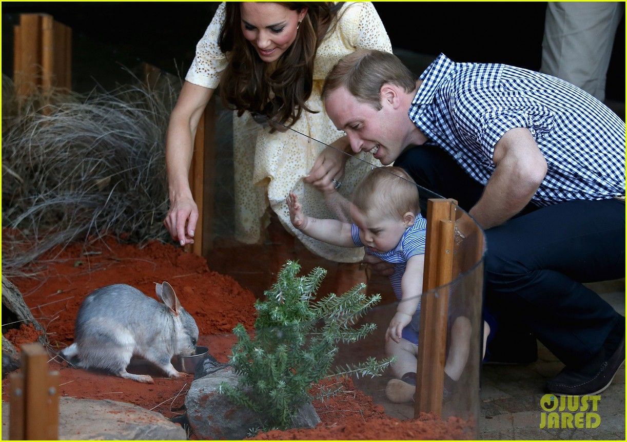 prince george goes to the zoo kate middleton prince william 19