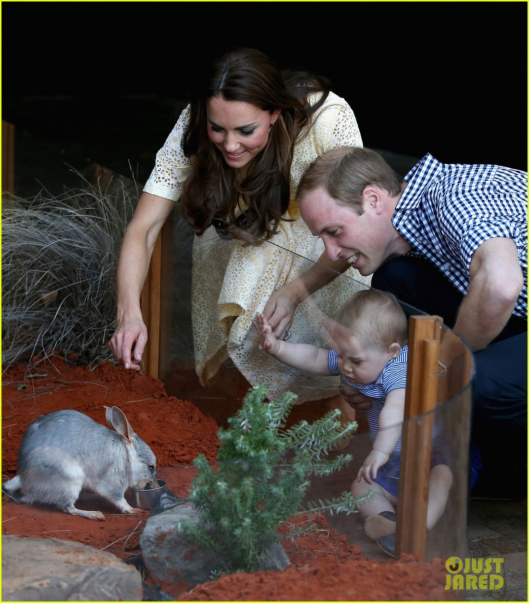 prince george goes to the zoo kate middleton prince william 203095521