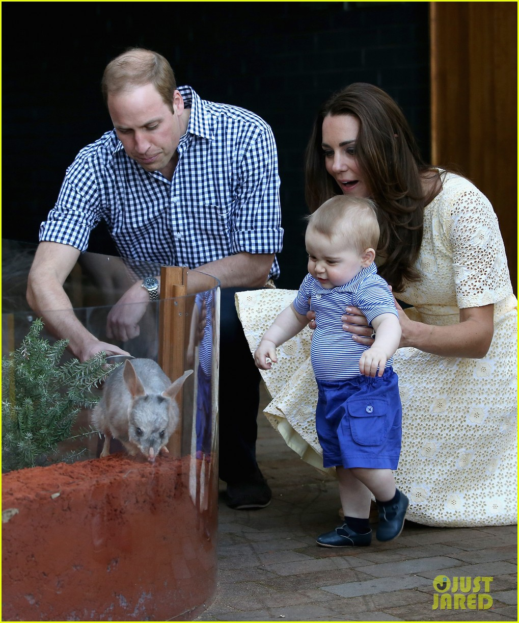 prince george goes to the zoo kate middleton prince william 24