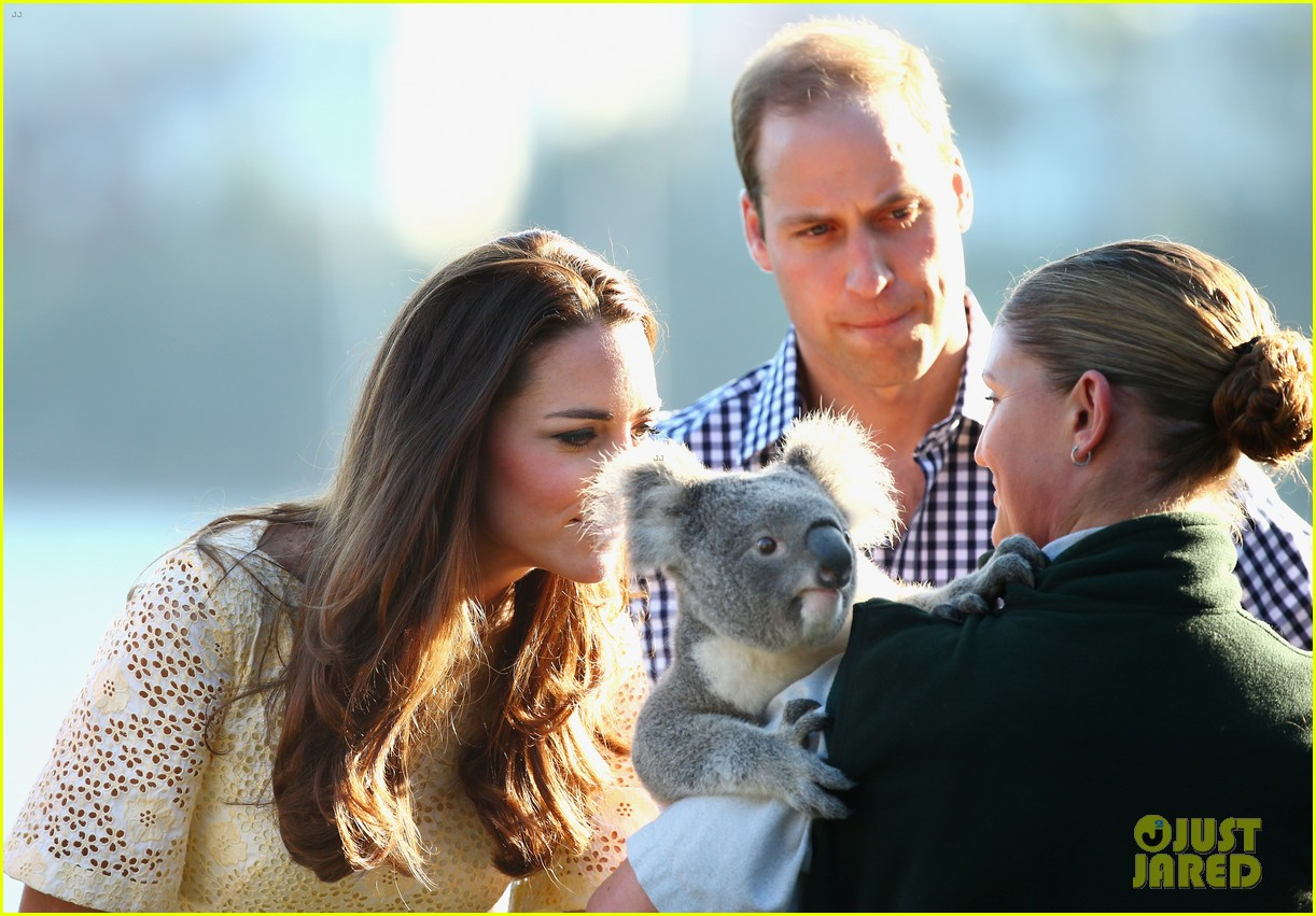 prince george goes to the zoo kate middleton prince william 293095530