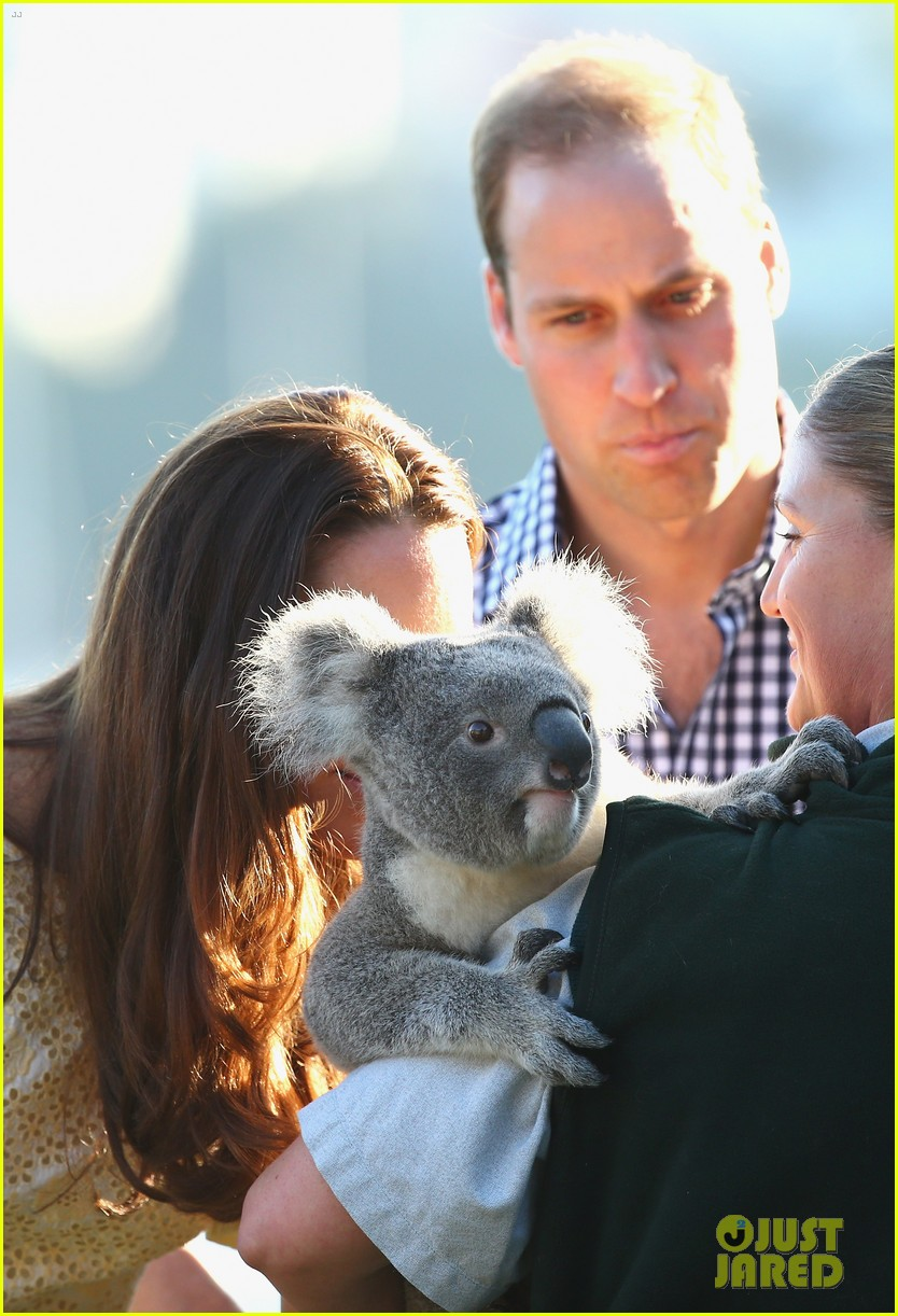 prince george goes to the zoo kate middleton prince william 303095531