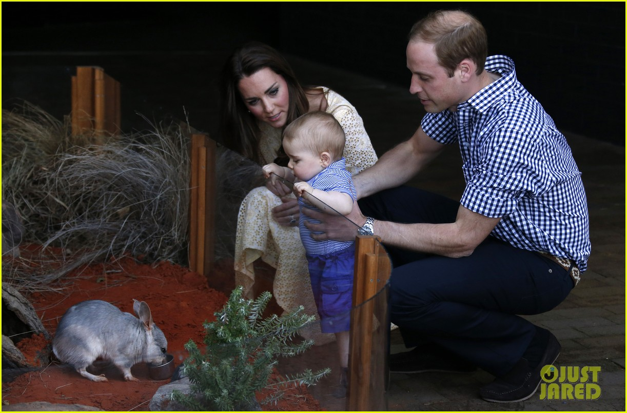 prince george goes to the zoo kate middleton prince william 343095535