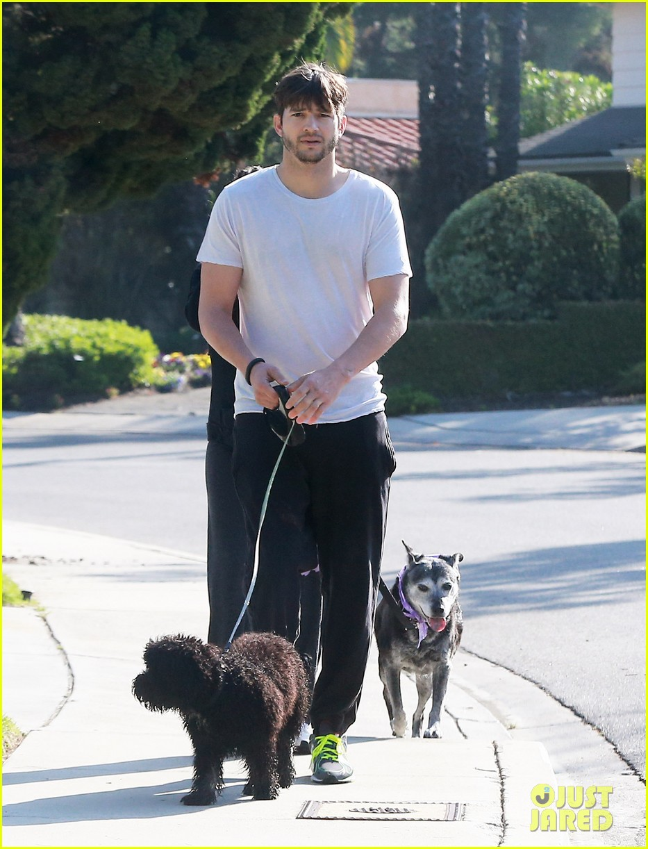 ashton kutcher shields mila kunis for easter sunday dog walk 05