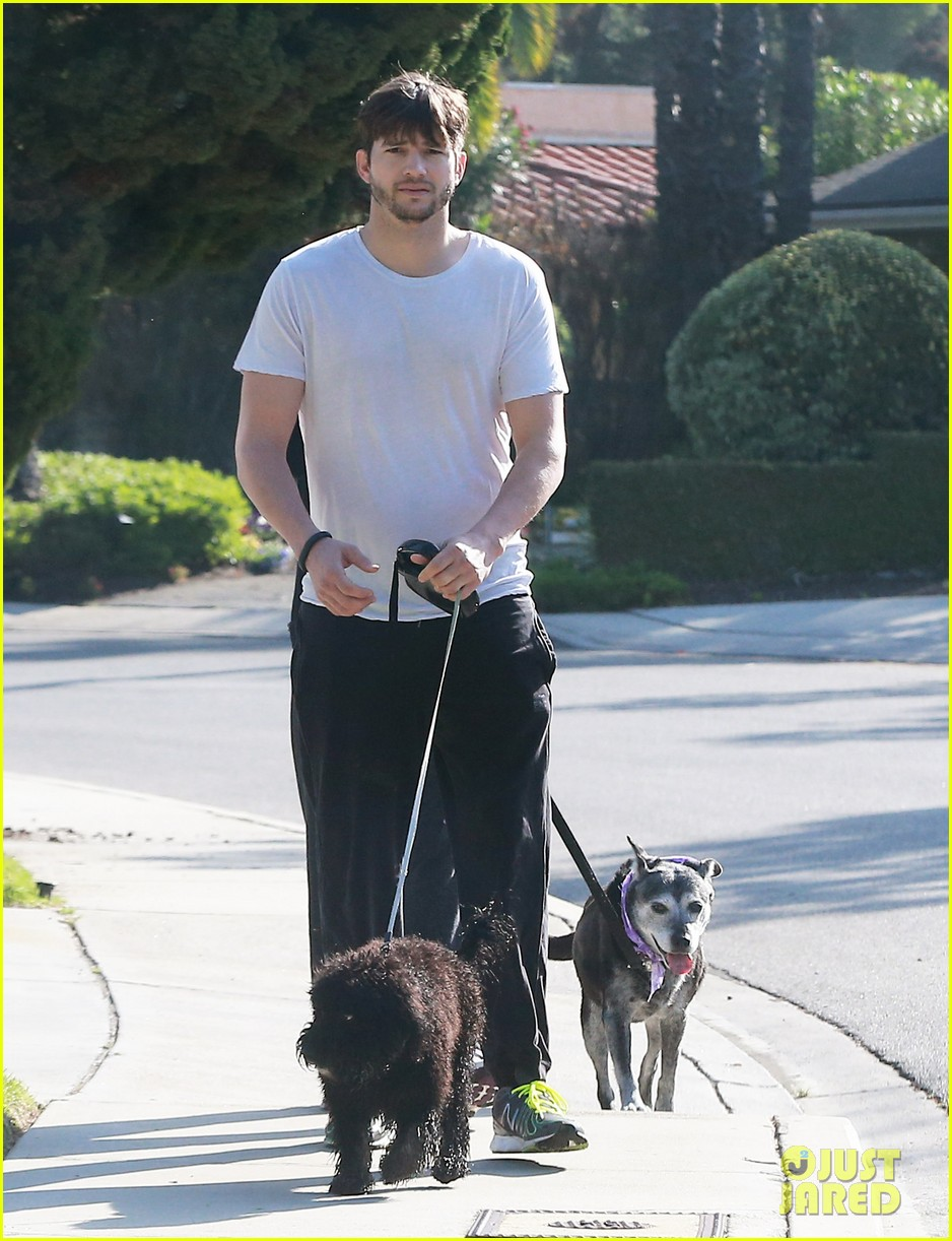 ashton kutcher shields mila kunis for easter sunday dog walk 073095805