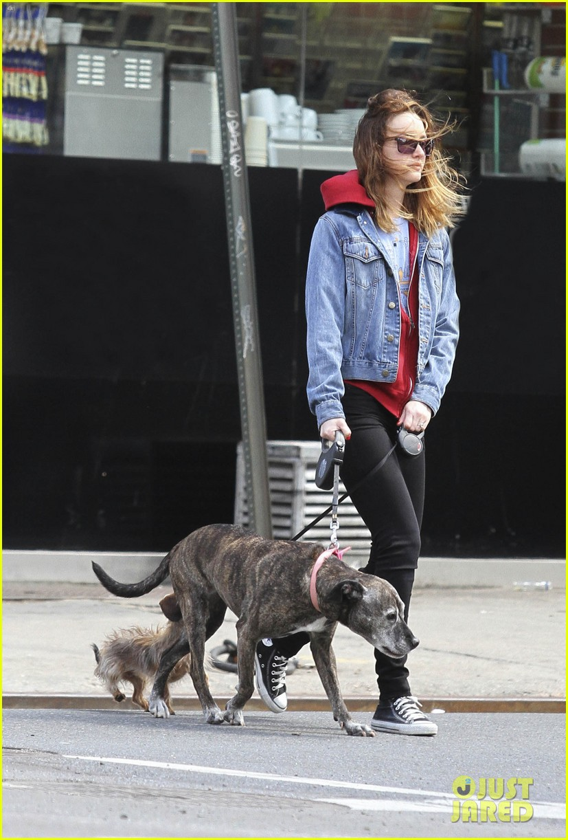 leighton meester windy walk pups pda adam brody 023085434