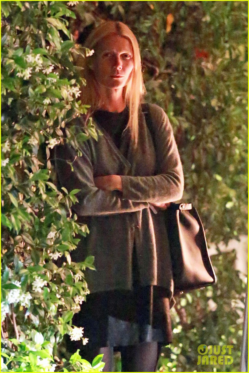 gwyneth paltrow goes makeup free after chris martin takes blame for split 083102416