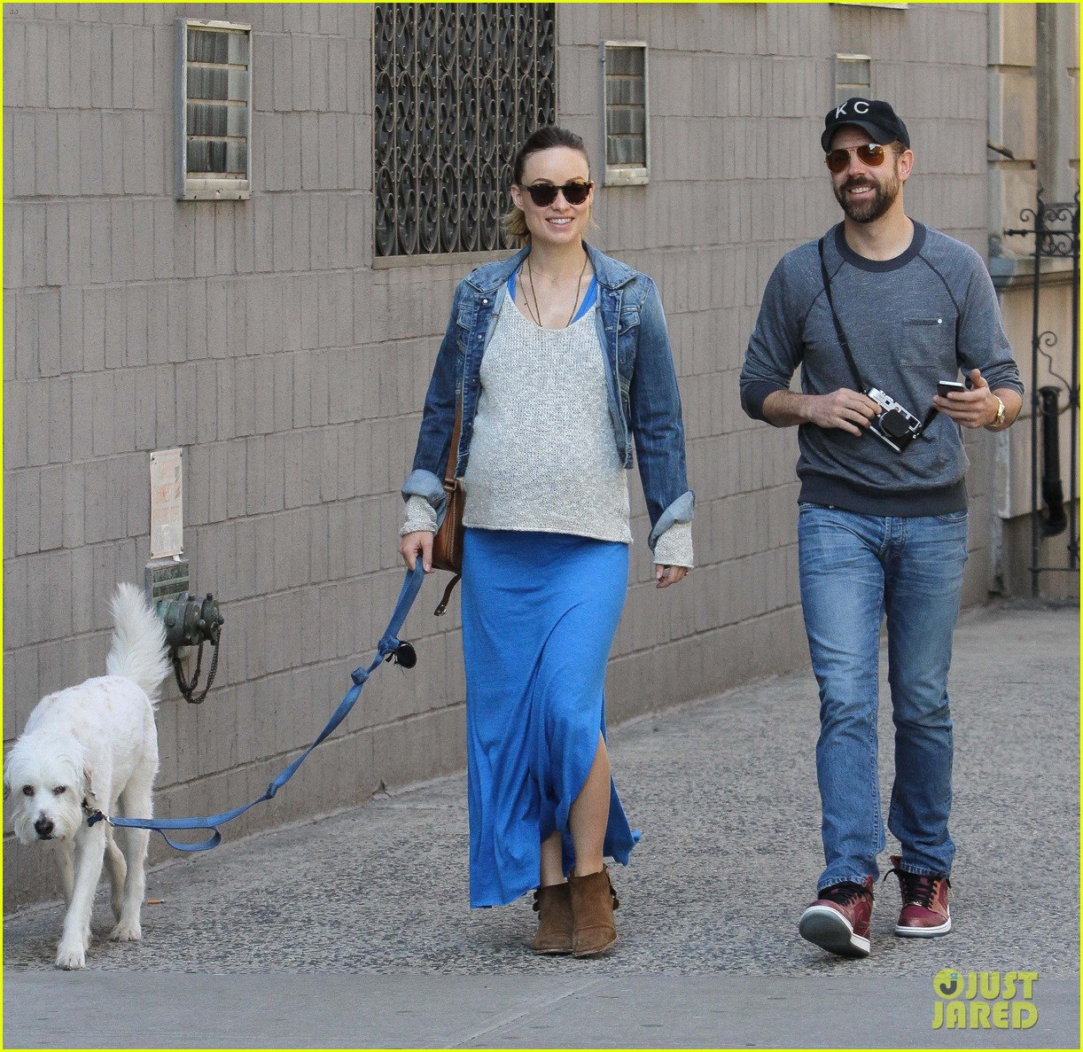 olivia wilde growing baby bump dog walk 093092183