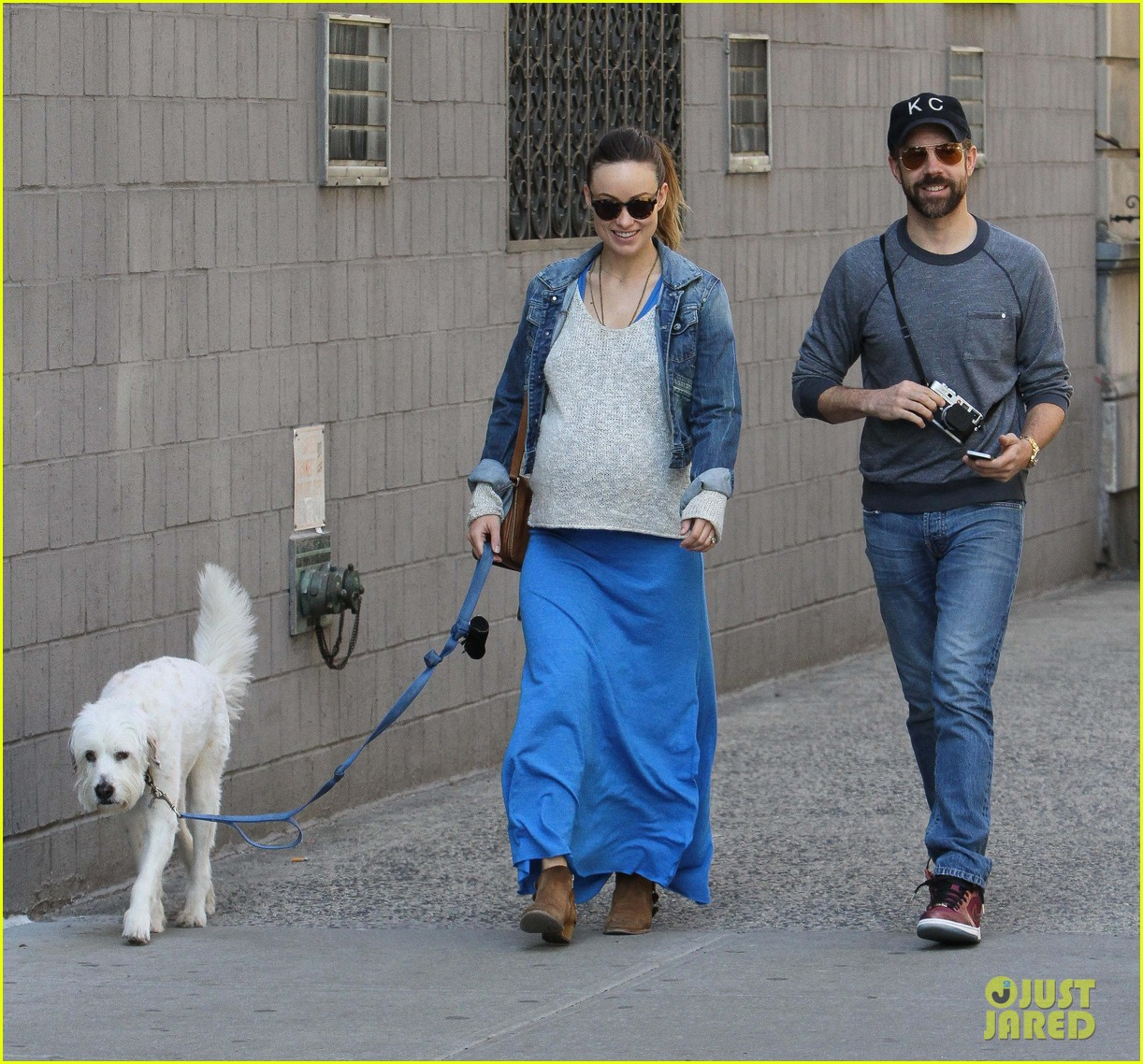 olivia wilde growing baby bump dog walk 11