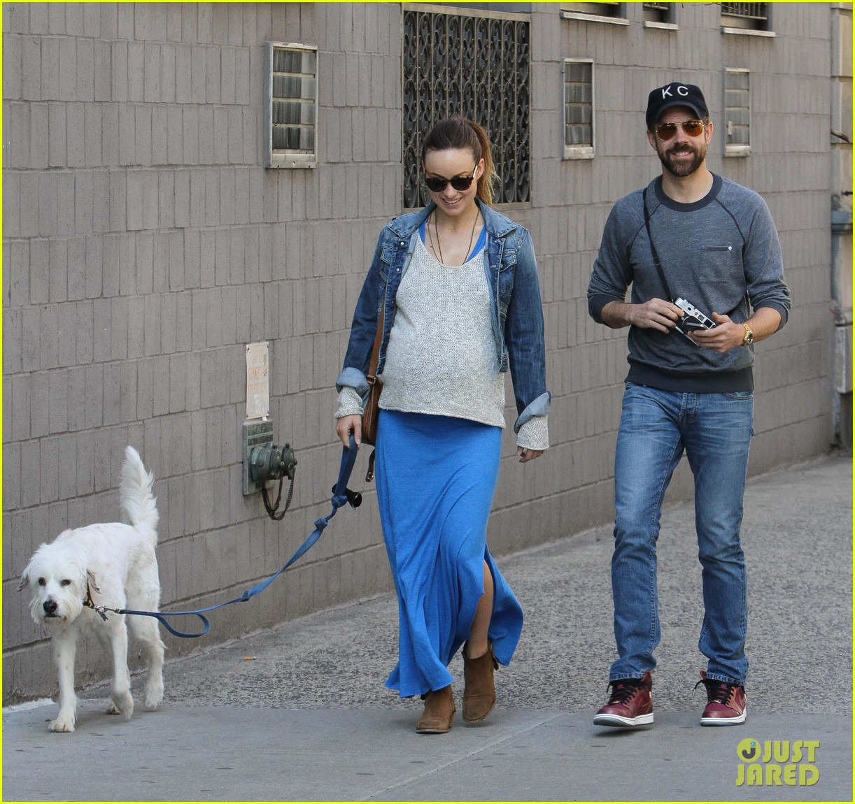 olivia wilde growing baby bump dog walk 12
