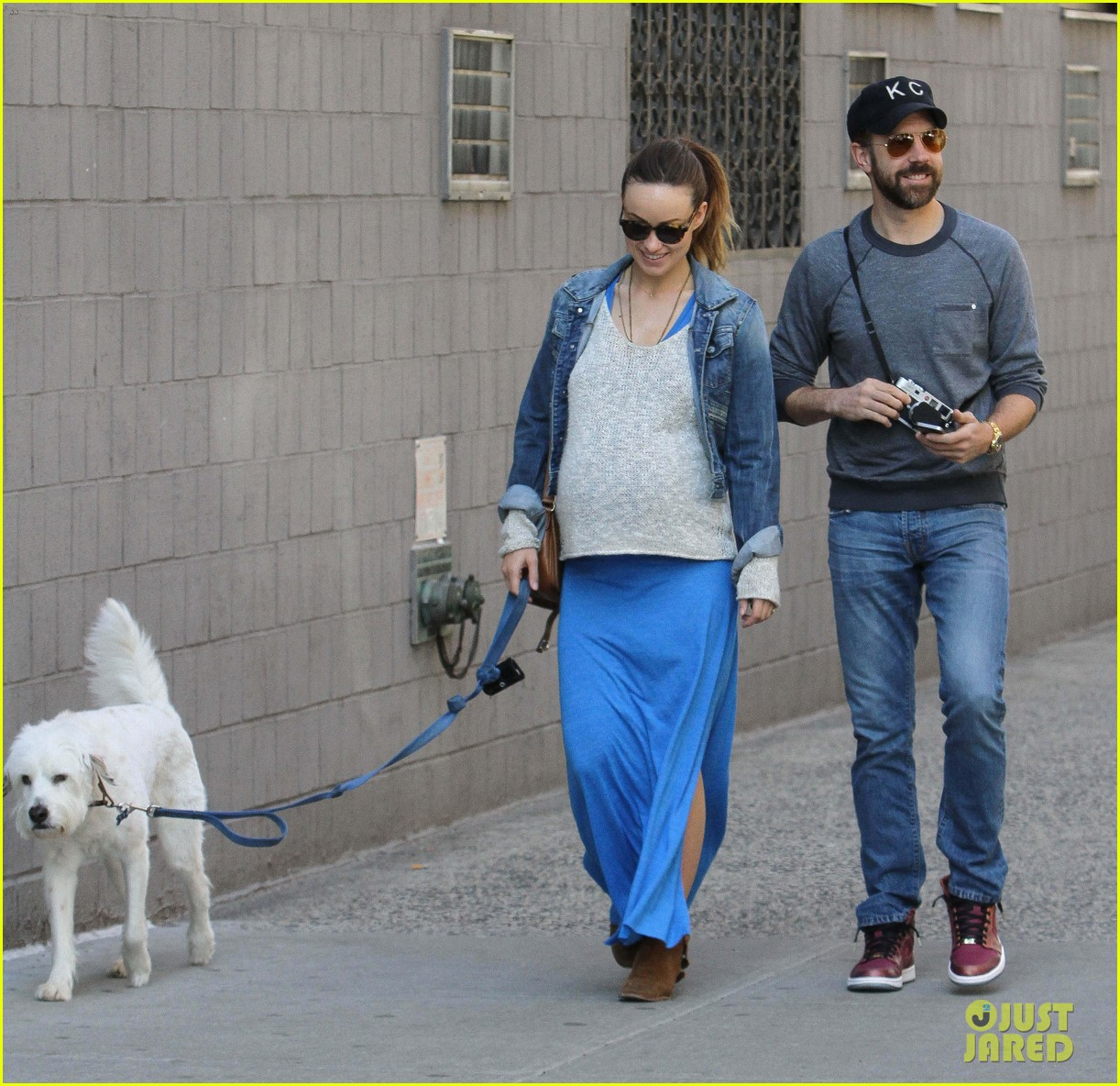 olivia wilde growing baby bump dog walk 143092188