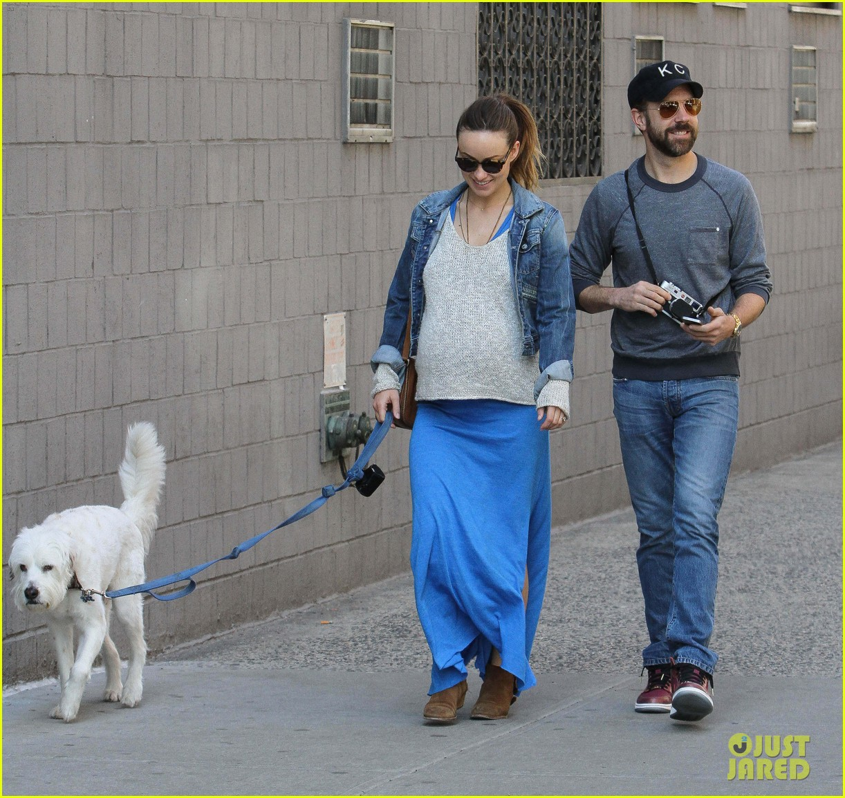 olivia wilde growing baby bump dog walk 153092189