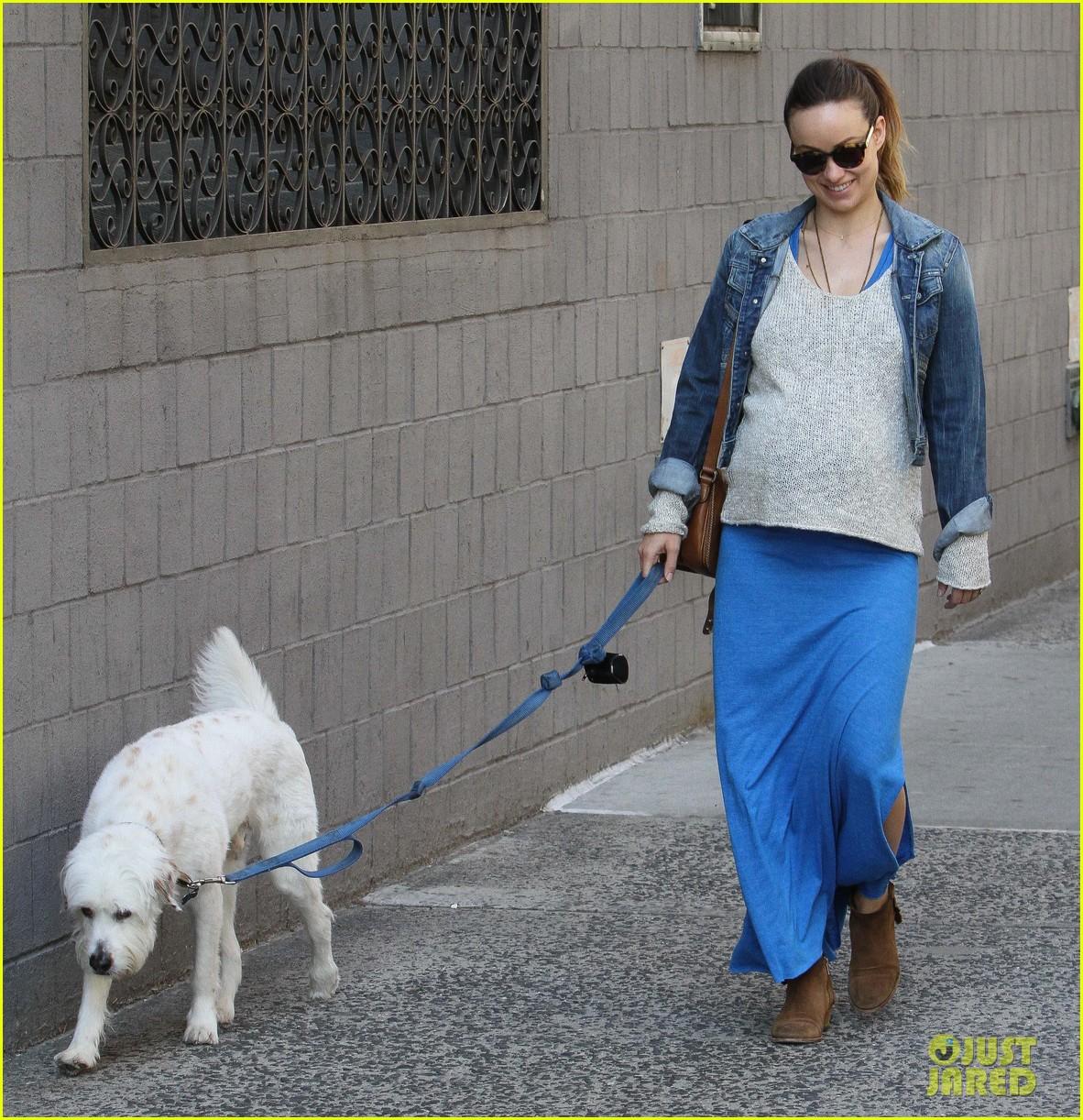 olivia wilde growing baby bump dog walk 223092196