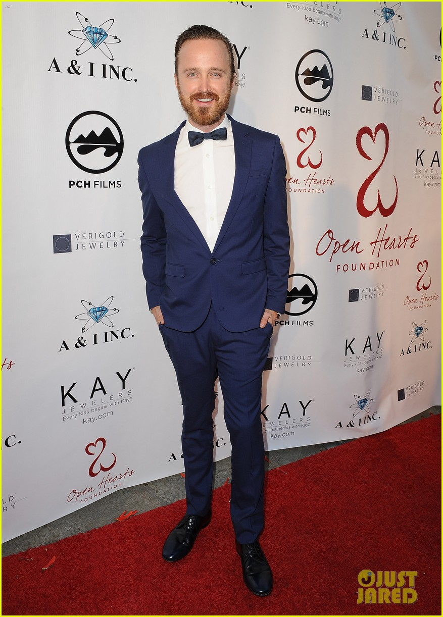 aaron paul wife lauren parksekian open your hearts gala 073110943