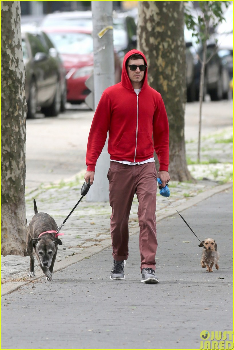 adam brody walks the dogs in his favorite sweatshirt013121658