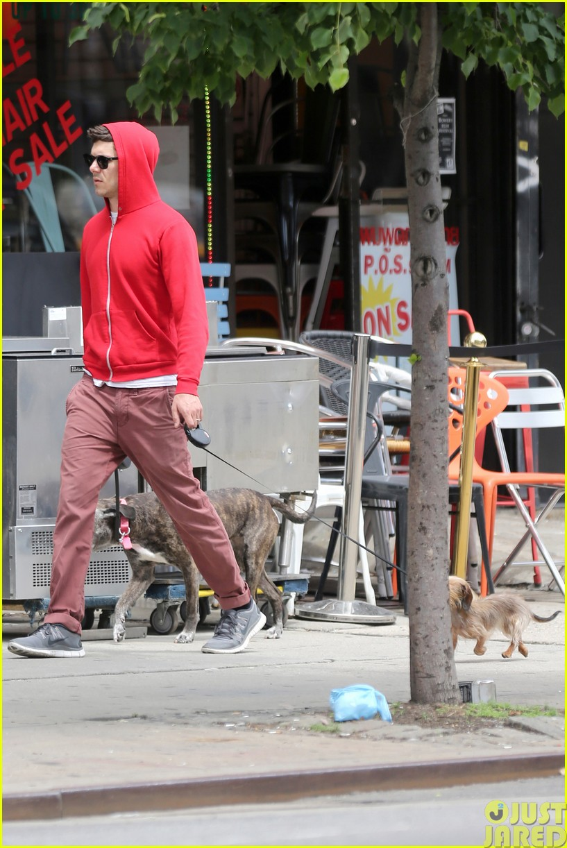 adam brody walks the dogs in his favorite sweatshirt133121670