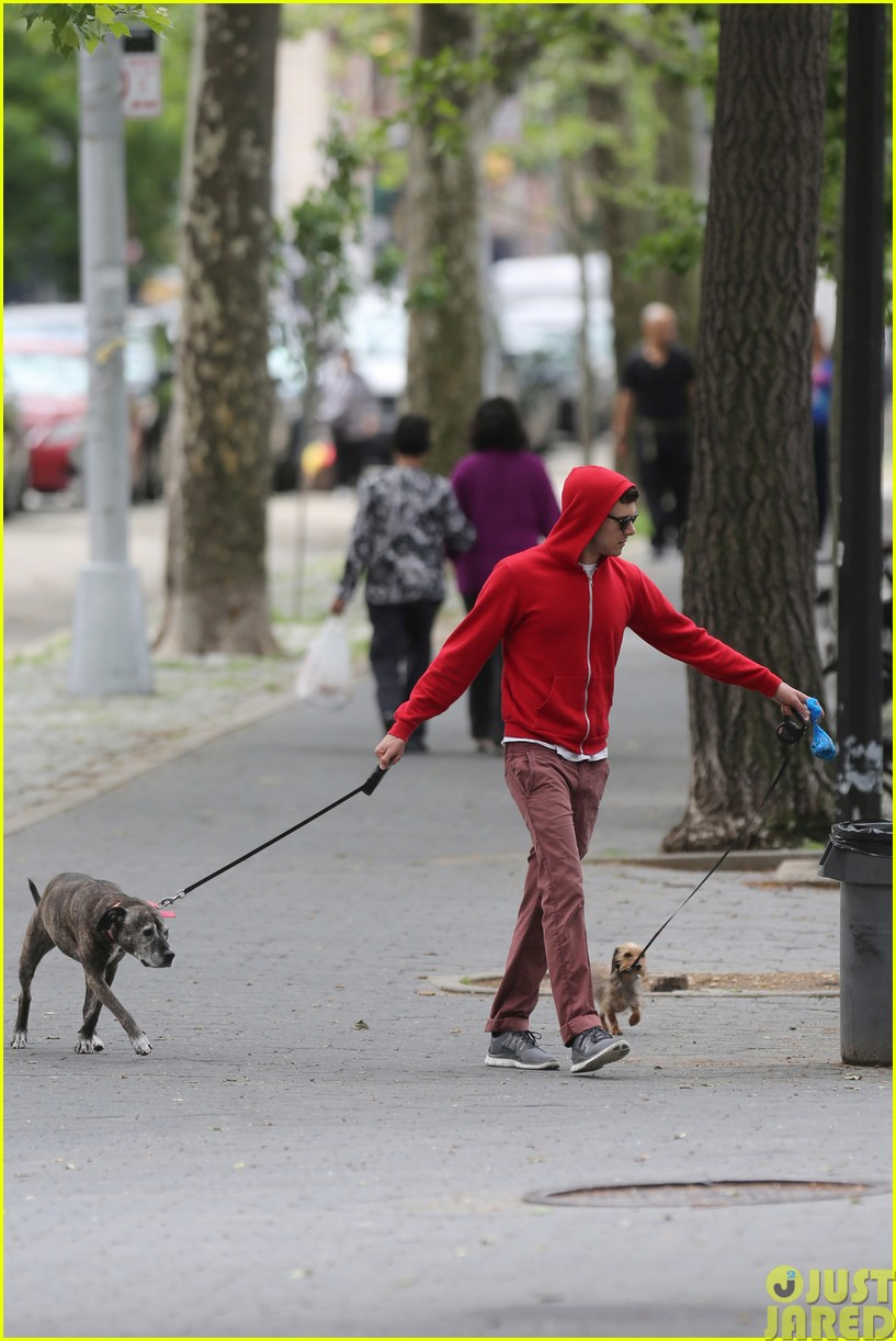 adam brody walks the dogs in his favorite sweatshirt143121671