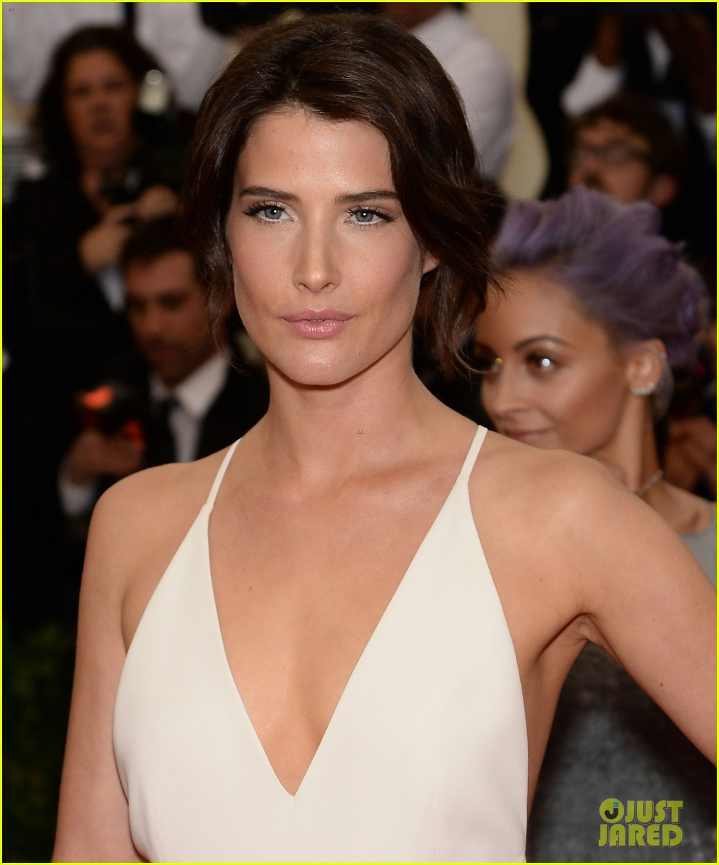 cobie smulders shines on met ball 2014 red carpet 013106579
