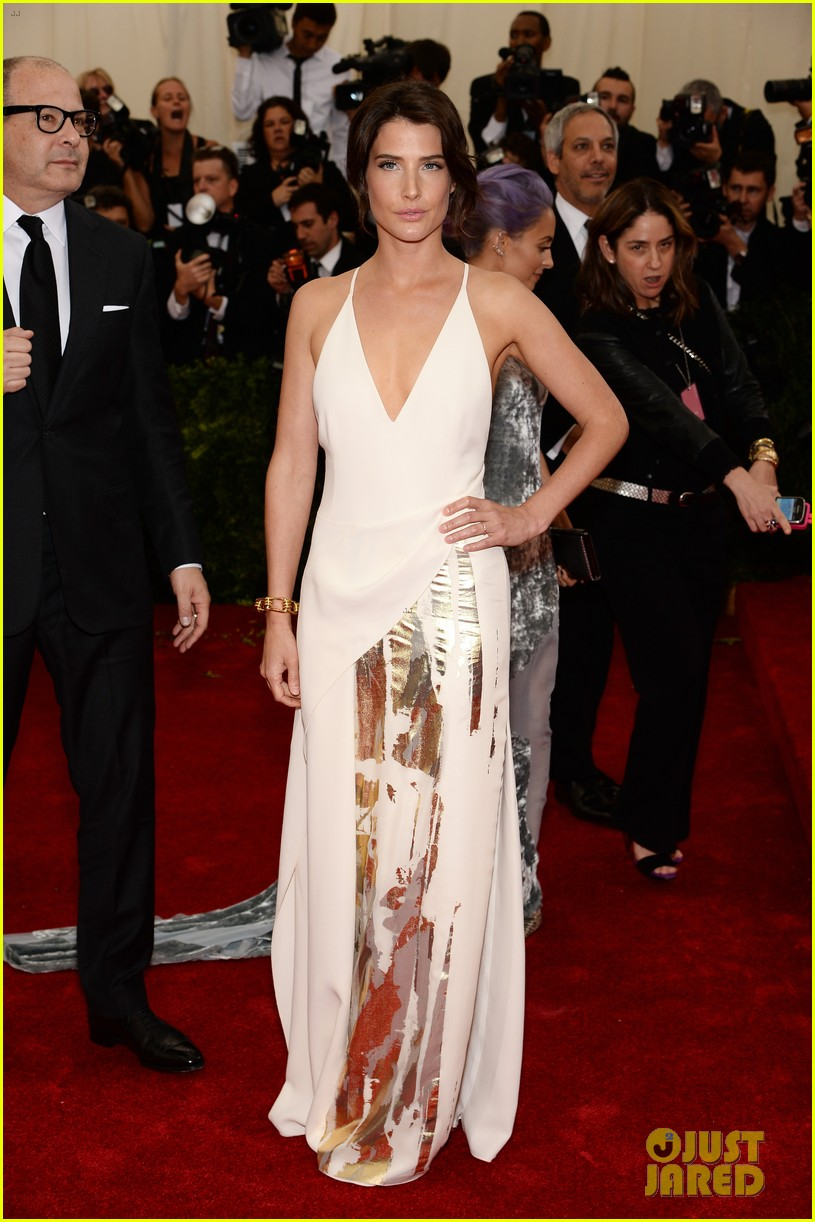 cobie smulders shines on met ball 2014 red carpet 043106582
