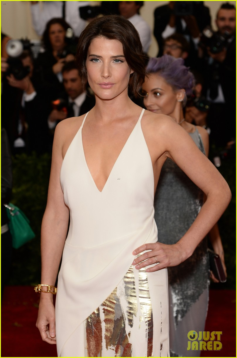 cobie smulders shines on met ball 2014 red carpet 053106583
