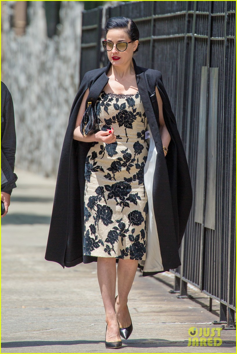 dita von teese georgia may jagger want to delete blood cancer 283108044