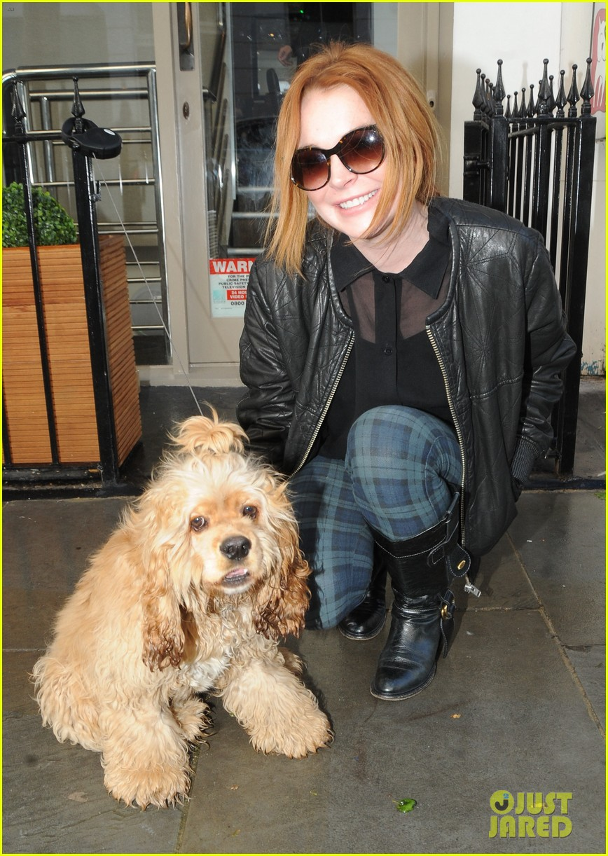 lindsay lohan adorable dog london 023110356