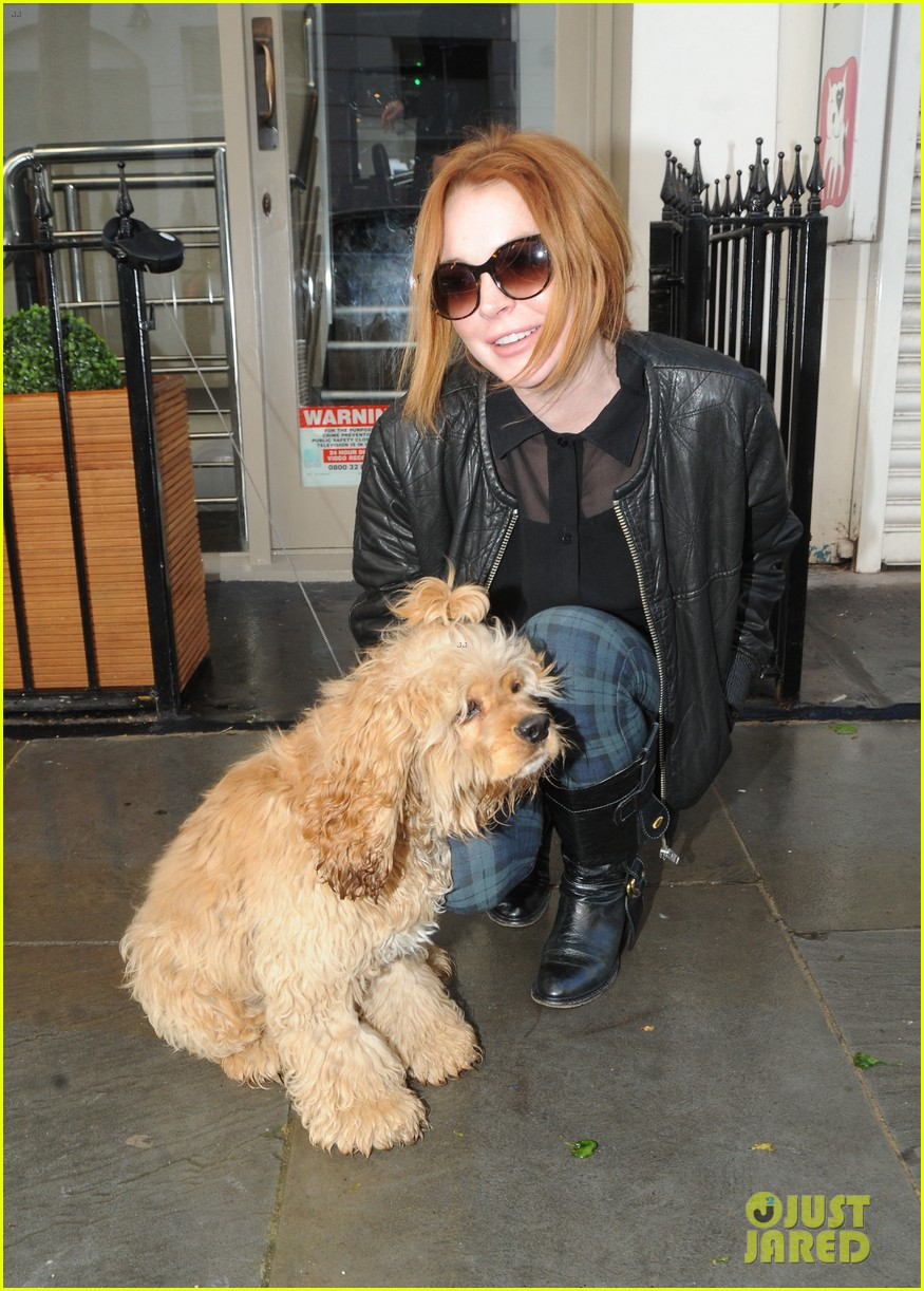 lindsay lohan adorable dog london 133110367