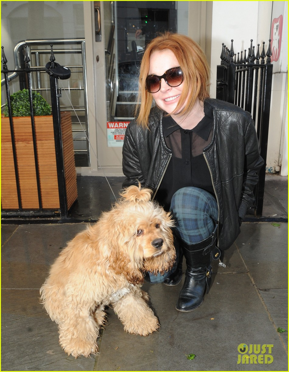 lindsay lohan adorable dog london 143110368