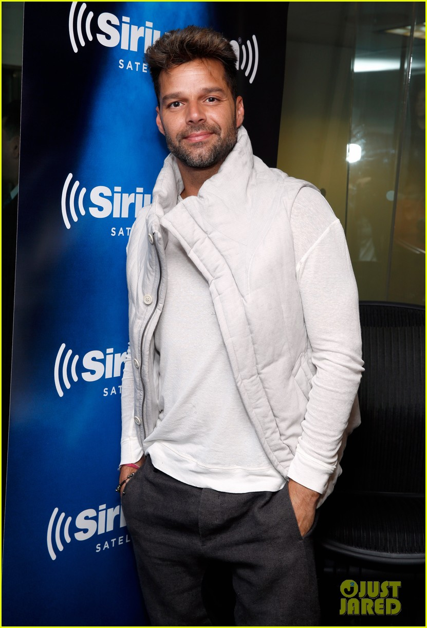ricky martin id love to come out again 073115009