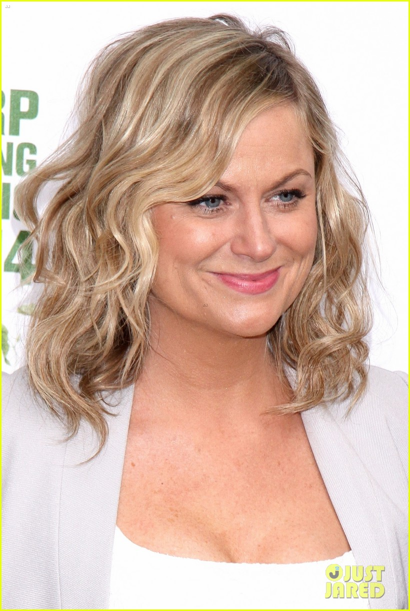 amy poehler drops by bette midler annual spring picnic 163124514