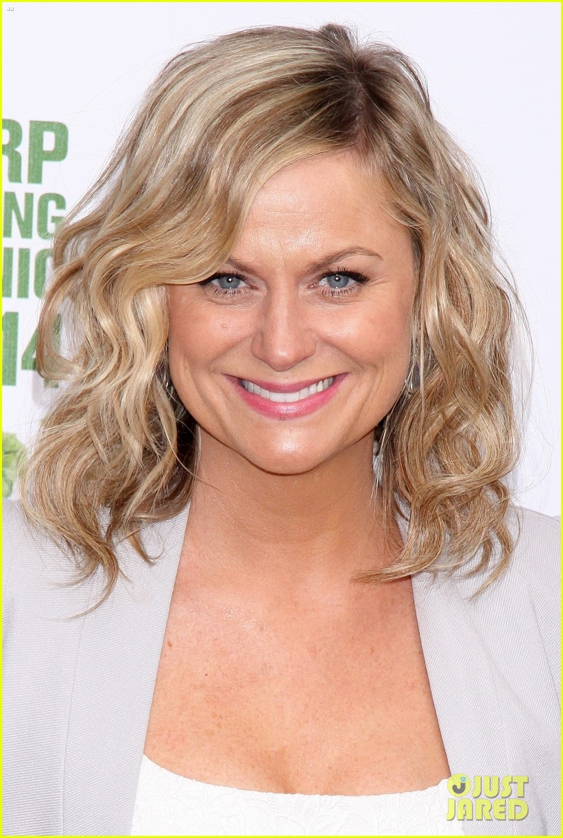 amy poehler drops by bette midler annual spring picnic 173124515