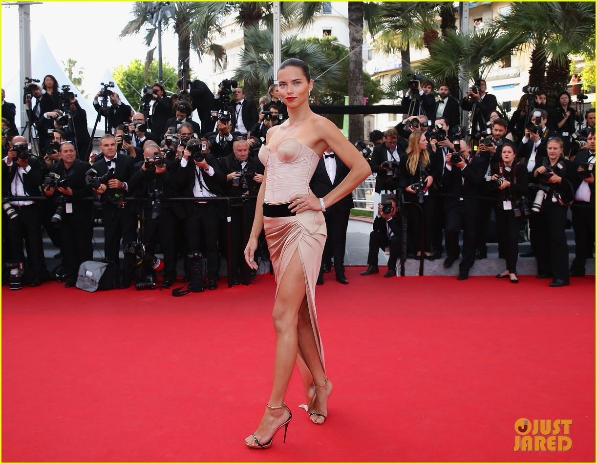 hilary swank the homesman premiere photo call cannes 073116440